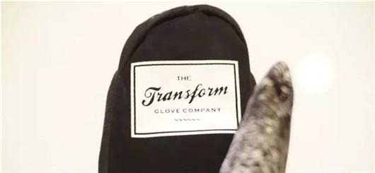 2015-TRANSFORM06
